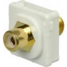 Australian Flush Plate Mounted RCA Female to F-Type Female Connector - White P4646WHI